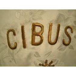 FACTUS CIBUS VIATORUM